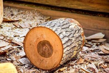 A fafajták alkalmazása